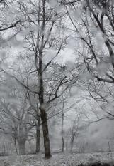 Schnee Totensonntag 2