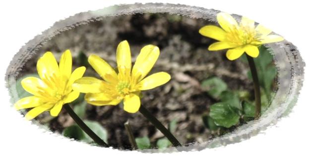 Frühling2